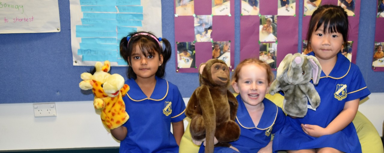 Kingsgrove public school students with puppets